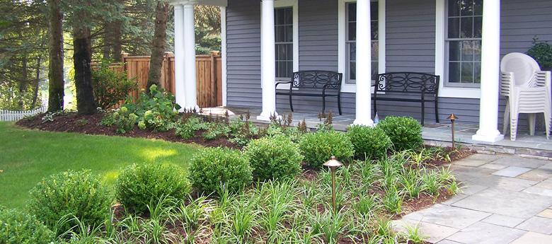 4 Edible Plant Ideas For Your Backyard Garden | Alfresco Landscapes